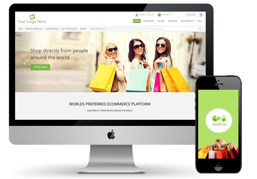 Grow a Profitable Online Store
