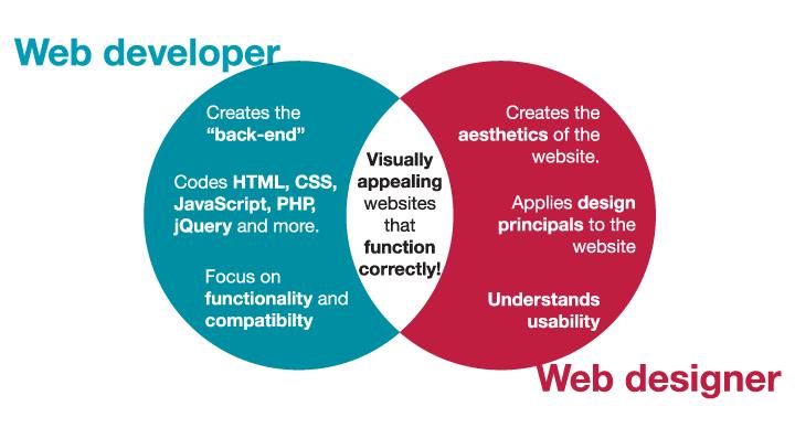 tasks of a web designer and web developer