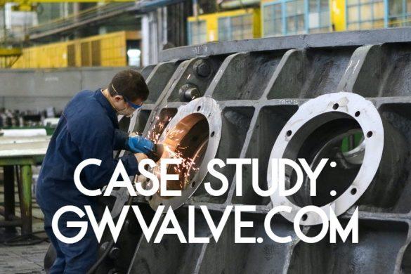 gwvalve case study
